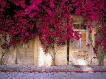 Το σπίτι στο χωριό - εκεί που πάντα θα επιστρέφουμε
