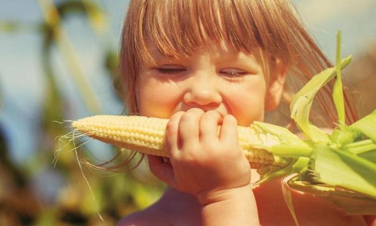 διατροφή ενός παιδιού με χαμηλό σίδηρο