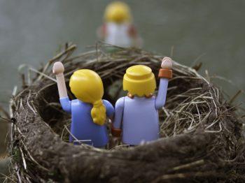 σύνδρομο της άδειας φωλιάς