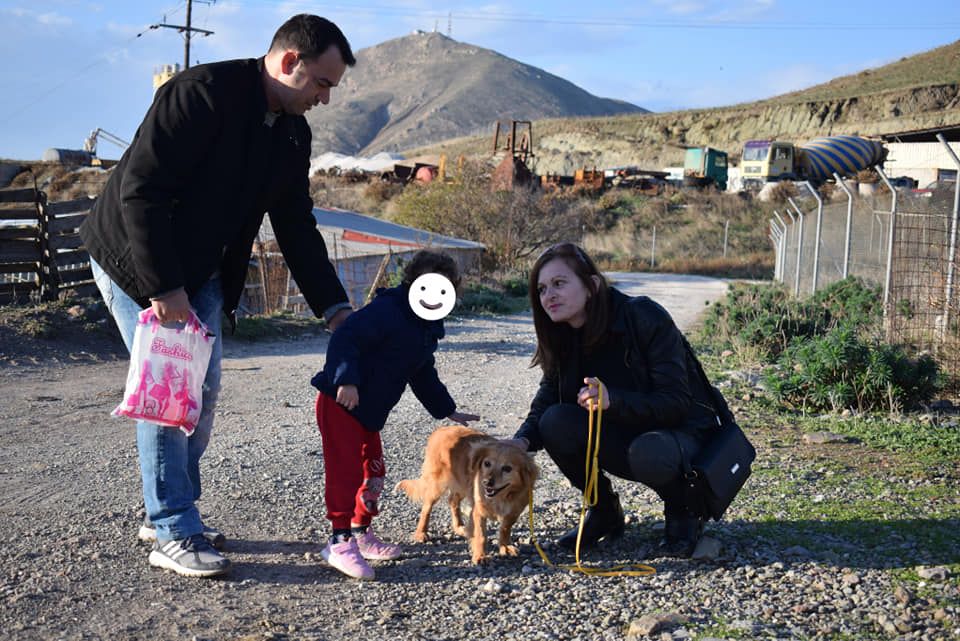 Μια διαφορετική εκδρομή: Νηπιαγωγείο στη Λήμνο επισκέφτηκε το καταφύγιο αδέσποτων του νησιού
