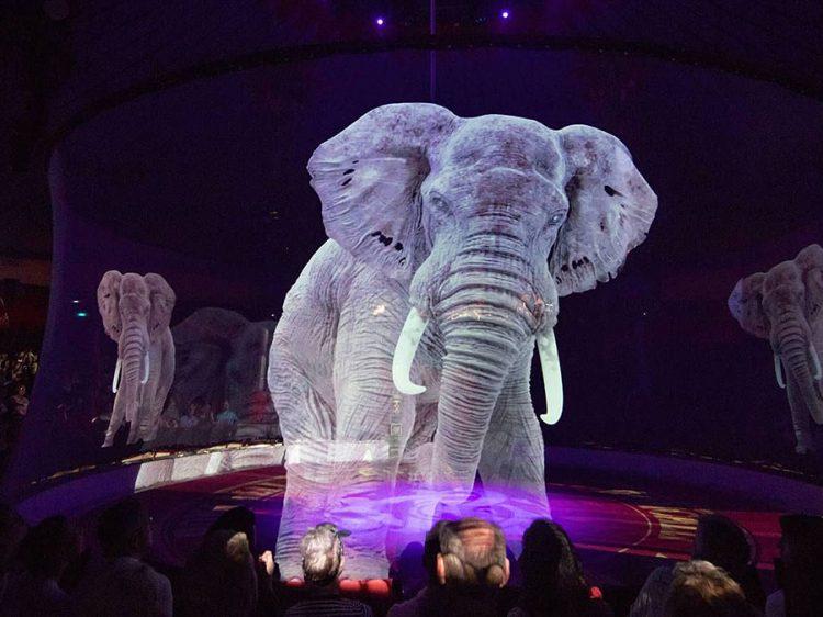 τσίρκο με ζώα