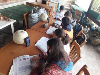 """Η """"άλλη όψη"""" της τηλεκπαίδευσης: Κάνουν μάθημα σε αυλή καφενείου με μπουφάν και κινητά στην Ηλεία"""