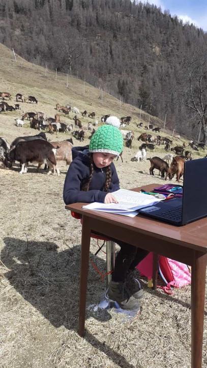 Fiammetta Melis | Η υπέροχη 10χρονη βοσκοπούλα που κάνει τηλεκπαίδευση στα βουνά της Ιταλίας