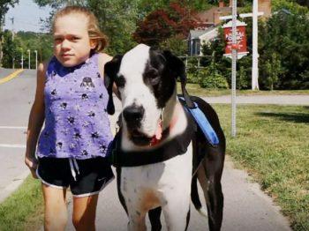 Πώς ένας σκύλος βοηθά ένα κορίτσι με κινητικές δυσκολίες